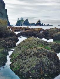 Sea stacks and tide pools,