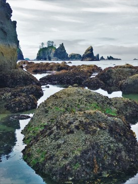 Sea stacks and tide pools,