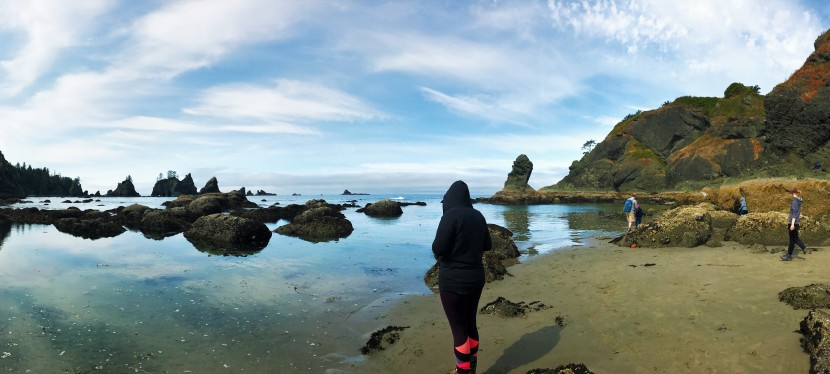 Shi Shi Beach Hiking and Camping 101: A CompleteGuide