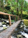 I love all the bridges in Olympic National Park.