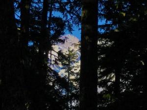 Mount Rainier from Lake George