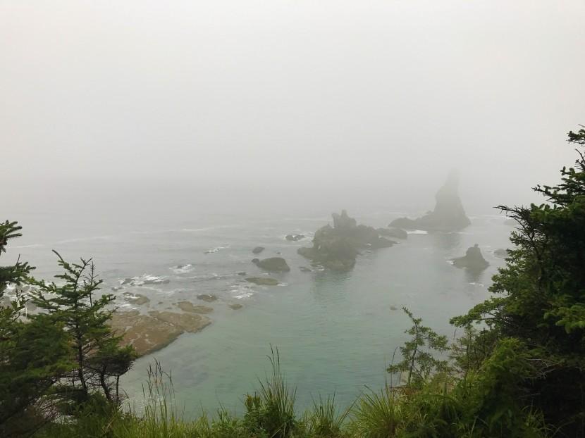 Camping on Shi Shi Beach: The Place I FoundZen