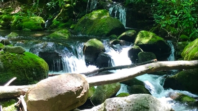 cascading waterfalls of forney creek