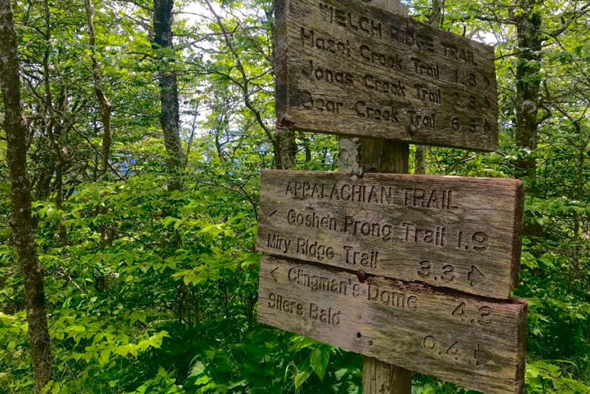 Hiking Forney Creek to the Appalachian Trail: A Complete Guide